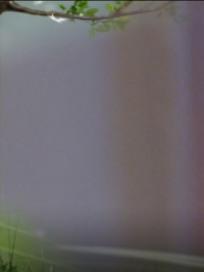 """'불어라 미풍아' 손호준(이장고) 임지연(김미풍) """"그냥 사랑하면 안되나요?""""…오지은 부상-임수향(박신애) 결혼식!(19회예고, 시청률)"""