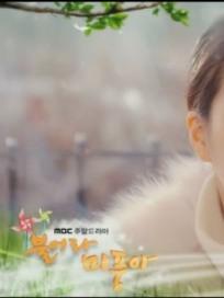 '불어라 미풍아' 행복 찾은 김미풍, 그리고 박신애의 최후…결말은? (51회, 마지막회 D-2, 시청률)
