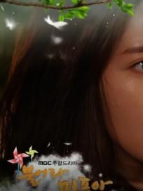 [주말드라마] '불어라 미풍아' 결말? 박신애 결국…김미풍·이장고 커플의 반전은! (52회 예고, 마지막회 D-1, 시청률)