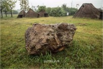 암각화 발견된 여수 오림동 고인돌군