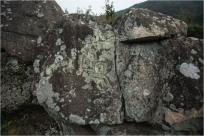 들판 한 가운데 서 있는 '여우바위' 암각화