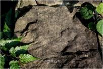 바위에 새긴 고대인의 상징언어 나주 운곡동 암각화