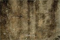 60기의 주거지가 확인된 나주 운곡동 유적지의 암각화