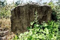지석묘 1000기가 확인된 나주 운곡동의 암각화