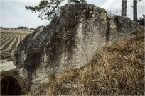 다섯 개의 바위에 새겨진 고대 문자 익산 호암리 암각화
