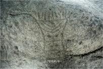 거북 모양 바윗덩이에 새겨진 영천 보성리 암각화