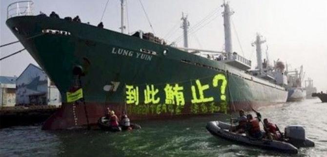 조세피난처로 자금을 빼돌린 기업들이 불법조업 선박이나 아마존 삼림 벌채 등에 대규모 투자를 하고 있는 것으로 드러났다.