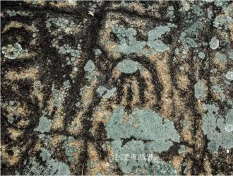 국내에서 처음 발견된 말굽형 안동 수곡리 암각화