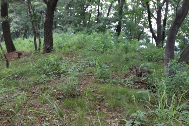 건원릉의 뒷편의 봉우리. 주산에 해당한다.