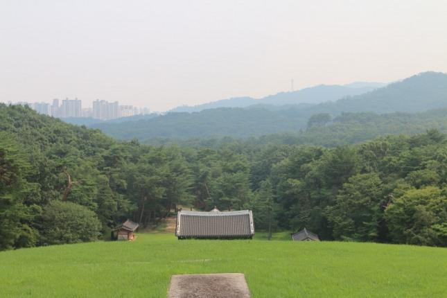건원릉위에서 바라 본 주변경관. 청룡에 해당하는 왼쪽의 숲은 높고 백호에 해당하는 오른쪽의 숲은 낮다.