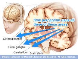 뇌착시현상