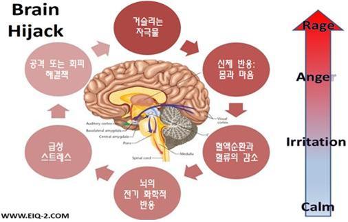 뇌편도체의 납치도