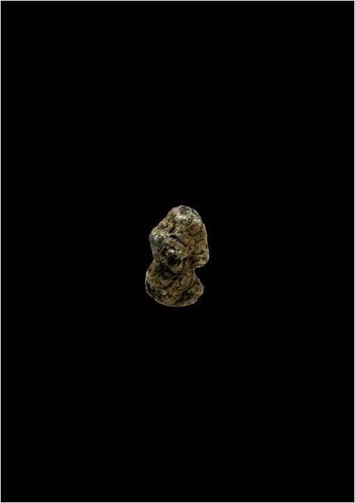 신석기 시대 울산 신암리 비너스상(像), 울산박물관