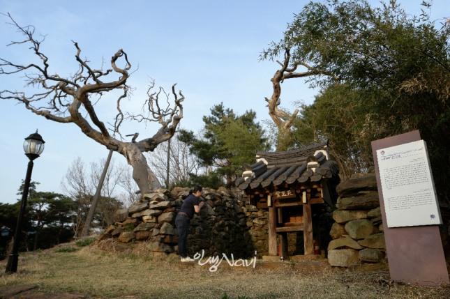 무속인 만신 김금휘(금휘궁)씨가 대구 논공천왕당(論工天王堂)에서 기도를 올리고 있다.
