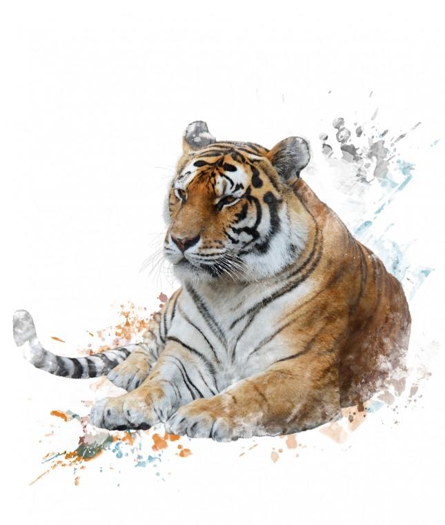 호랑이를 타고 하늘을 날아가는 꿈은 부귀공명하고 입신출세하여 세상에 명성을 떨치게 된다는 길몽을 암시한다. 자료=글로벌이코노믹