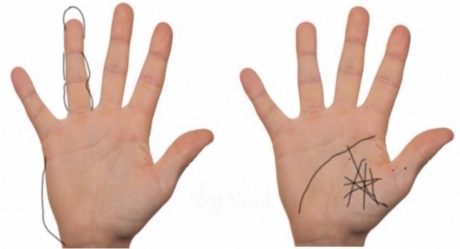 하정우, 나얼, 임혁필 등 연예인들이 화가의 재능을 드러내며 인기를 누리고 있다. 미술적 재능을 지닌 사람들은 손가락 끝이 가늘고 피부가 부드러우며 유연하다.