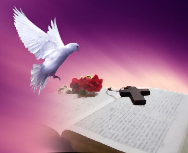 비둘기가 방으로 들어와 똥을 싸는 꿈은 돈과 재물이 생기고 새 식구를 맞게 된다. 횡재, 행운이 온다. 자료=글로벌이코노믹