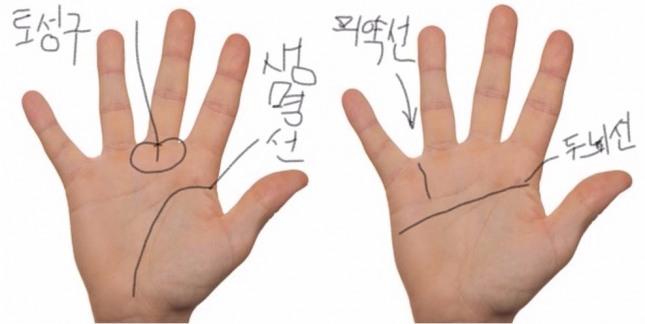 의성 화타나 동의보감을 저술한 허준과 같은 의사들의 손금은 손이 가늘고 손가락은 길다.