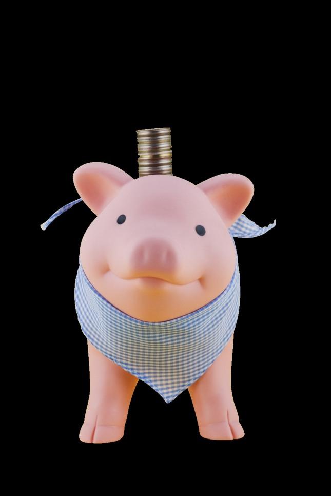 돼지가 나오는 꿈 중에서 돼지를 자신의 품 안으로 끌어 안거나 기분 좋은 마음으로 돼지새끼를 쓰다듬는 꿈은 큰 부자가 될 자식을 얻게 되는 태몽이다. 자료=글로벌이코노믹