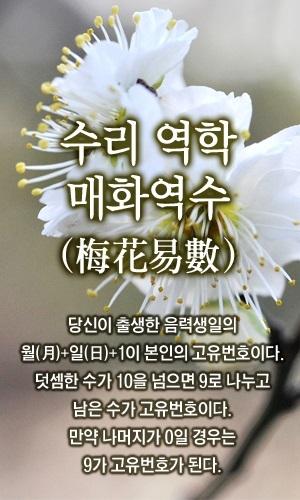 글로벌이코노믹 금휘궁의 수리 '오늘의운세'.