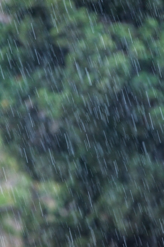 비를 흠뻑 맞았는데 시원함을 느꼈다면 마음 속의 근심걱정을 훌훌 틀어버리게 됨을 암시한다. 자료=글로벌이코노믹