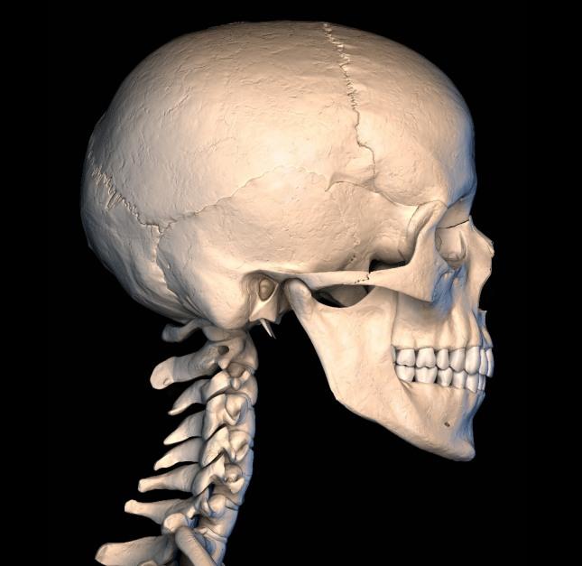 자신의 얼굴이 해골로 보이는 꿈은 유행성 질환이나 병에 걸려 위독하게 됨을 암시한다. 자료=글로벌이코노믹