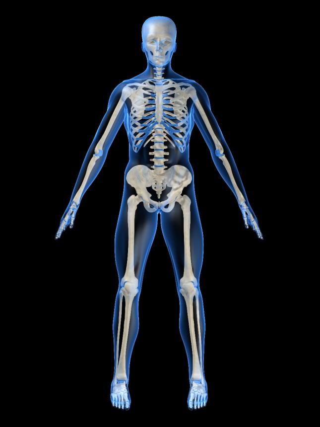 보물을 찾다가 흙을 헤치니 사람의 뼈가 나오는 꿈은 논문이 채택되거나 학위증, 돈, 증서 등을 얻게 된다. 자료=글로벌이코노믹
