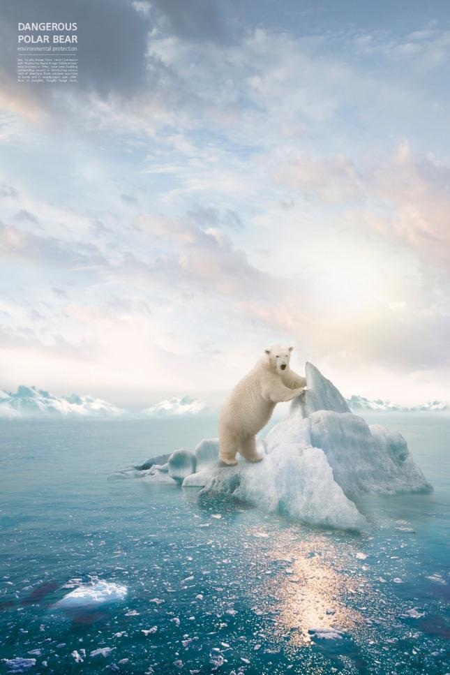 곰이 나무에 기어오르는 꿈은 출세를 하게 되거나 진급 등이 이루어져 재물을 축적하게 된다. 자료=글로벌이코노믹