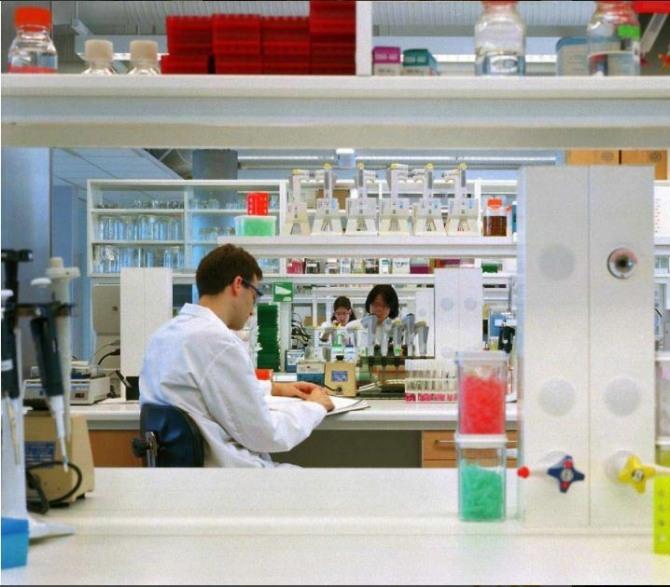 영국에서 신종 코로나바이러스 감염증(코로나19) 확진자가 급증하면서 백신 임상 3상 시험에 속도전이 붙고 있다.  사진=AstraZeneca